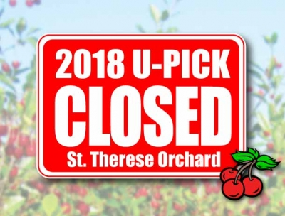 CHERRY ORCHARD – U-PICK CANCELLED for 2018
